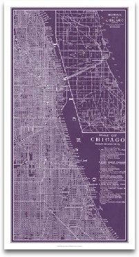 Graphic Map Of Chicago preview