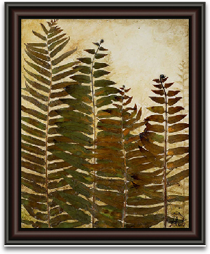 16x20 Fern preview