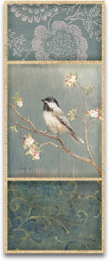 Black Capped Chickadee preview