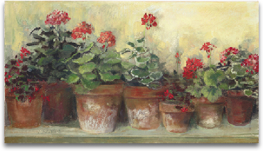 Kathleen's Geraniums preview
