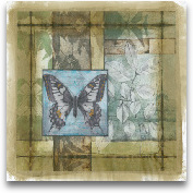 Stained Glass Butter...<span>Stained Glass Butterfly II</span>