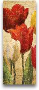 Tulip Fantasy On Cre...<span>Tulip Fantasy On Cream II - 8x20</span>