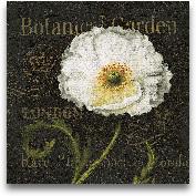 Botanical Garden II ...<span>Botanical Garden II - 12x12 Borderless</span>