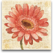 Blushing Gerbera On ...<span>Blushing Gerbera On Cream - 18x18</span>