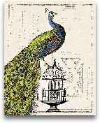 Peacock Birdcage I -...<span>Peacock Birdcage I - 16x20</span>