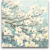 Dogwood Blossom II