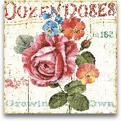 Rose Garden II - 18x18