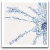 Chambray Palms I