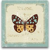 Parisian Butterfly  ...<span>Parisian Butterfly  I - 12x12</span>