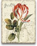 Garden View II - Red...<span>Garden View II - Red Tulip - 16x20</span>
