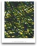 Green Thicket I