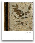 Earthen Textures V