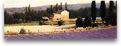 Lavender Fields Pane...<span>Lavender Fields Panel II - 36x12</span>