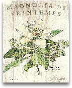 Magnolia De Printemp...<span>Magnolia De Printemps - 16x20</span>