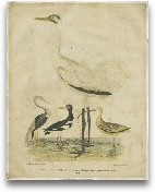 Embellished Crane &a...<span>Embellished Crane &amp; Heron</span>