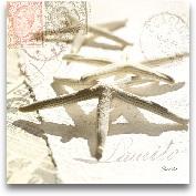 Postal Shells III 12x12