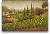 Vineyard In The Sun I