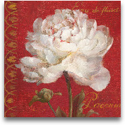 Paris Blossom IV