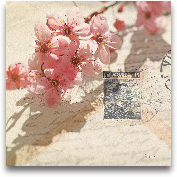 Vintage Letters And ...<span>Vintage Letters And Cherry Blossoms</span>