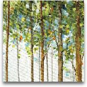 Forest Study III - 18x18