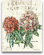 Fleur De Printemps -...<span>Fleur De Printemps - 16x20</span>