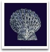 Indigo Shells VIII