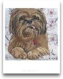 Dlynn's Dogs - Cody