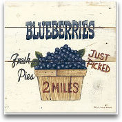 Blueberries Just Picked