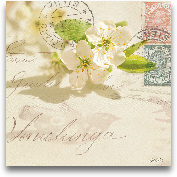 Vintage Letter And A...<span>Vintage Letter And Apple Blossoms</span>