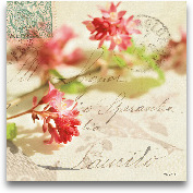 Vintage Letters And ...<span>Vintage Letters And Pink Blossoms</span>