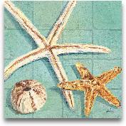 Starfish III - 12x12