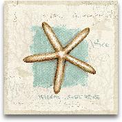 Coastal Jewels IV - ...<span>Coastal Jewels IV - 12x12</span>