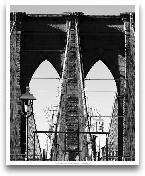 Bridges Of NYC II