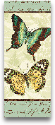 Butterfly Patchwork ...<span>Butterfly Patchwork I - 8x20</span>