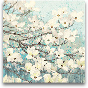 Dogwood Blossoms II ...<span>Dogwood Blossoms II - 24x24</span>