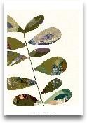 Hip Leaves I