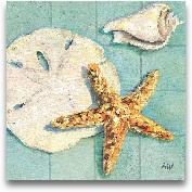 Starfish II - 12x12