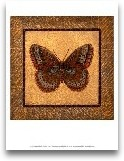 Crackled Butterfly -...<span>Crackled Butterfly - Fritillary</span>