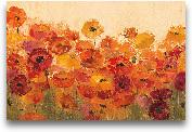 Summer Poppies - 36x24