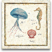 Oceanography III - 12x12