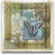 Stained Glass Butter...<span>Stained Glass Butterfly III</span>