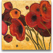 Poppies Wildly I 18x18