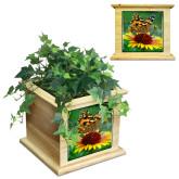 Maple Planter Box