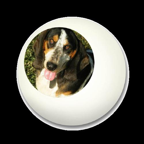 Dog Ball