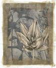 Embellished Tulip & Wildflowers I