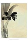 Orchid Blush Panels I