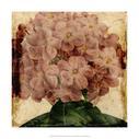 Vibrant Floral IX