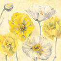 Gold and White Contemporary Poppies II - 18x18