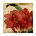 Vibrant Floral VIII