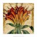 Vibrant Floral IV
